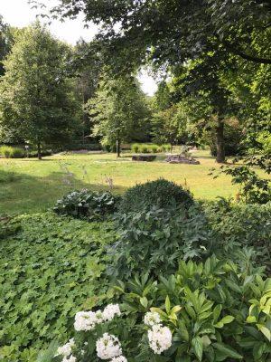 Giardino Black Forest
