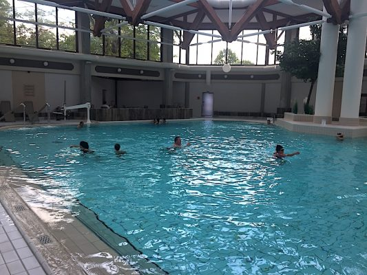 Piscina Black Forest