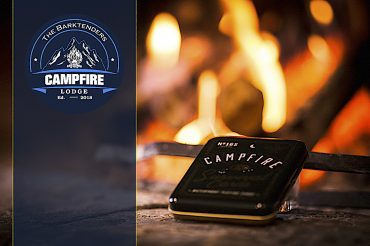 Post Novita Campfire 2019